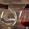 """Вино Martin Codax, """"Musica en El Camino"""" Mencia, Bierzo DO, 2018, 0.75 л (Вино """"Музыка эн Эль Камино"""" Менсиа, 2018, 750 мл)"""