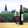 """Вино """"Chateau Pierrail"""" Rouge, Bordeaux Superieur AOC, 2015, 0.75 л (Вино """"Шато Пьеррай"""" Руж, 2015, 750 мл)"""