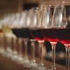 """Вино """"Cygnus"""" IGT, 2016, 0.75 л (Вино """"Чинюс"""", 2016, 750 мл)"""